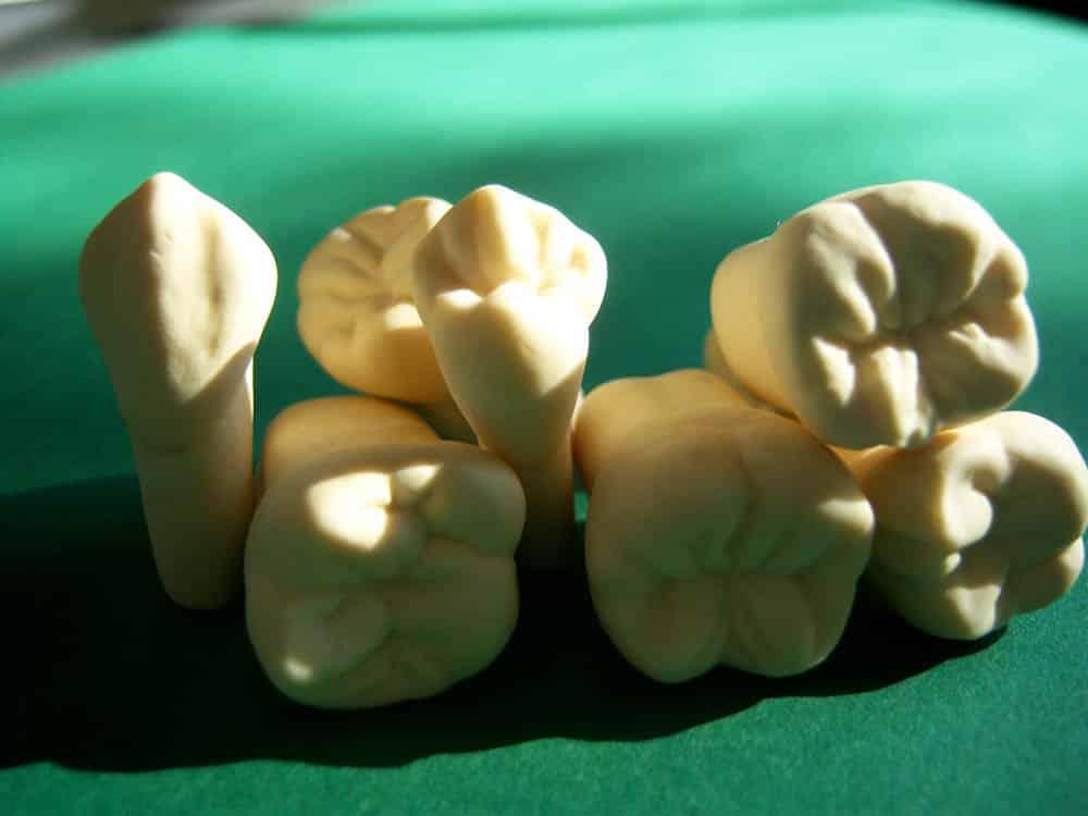 Bildergalerie Artikel Zahnkunst 14