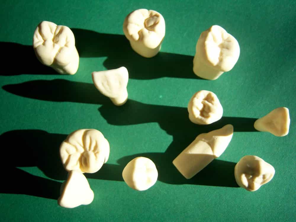 Bildergalerie Artikel Zahnkunst 9